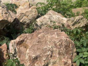 Валун мрамор красно-белый